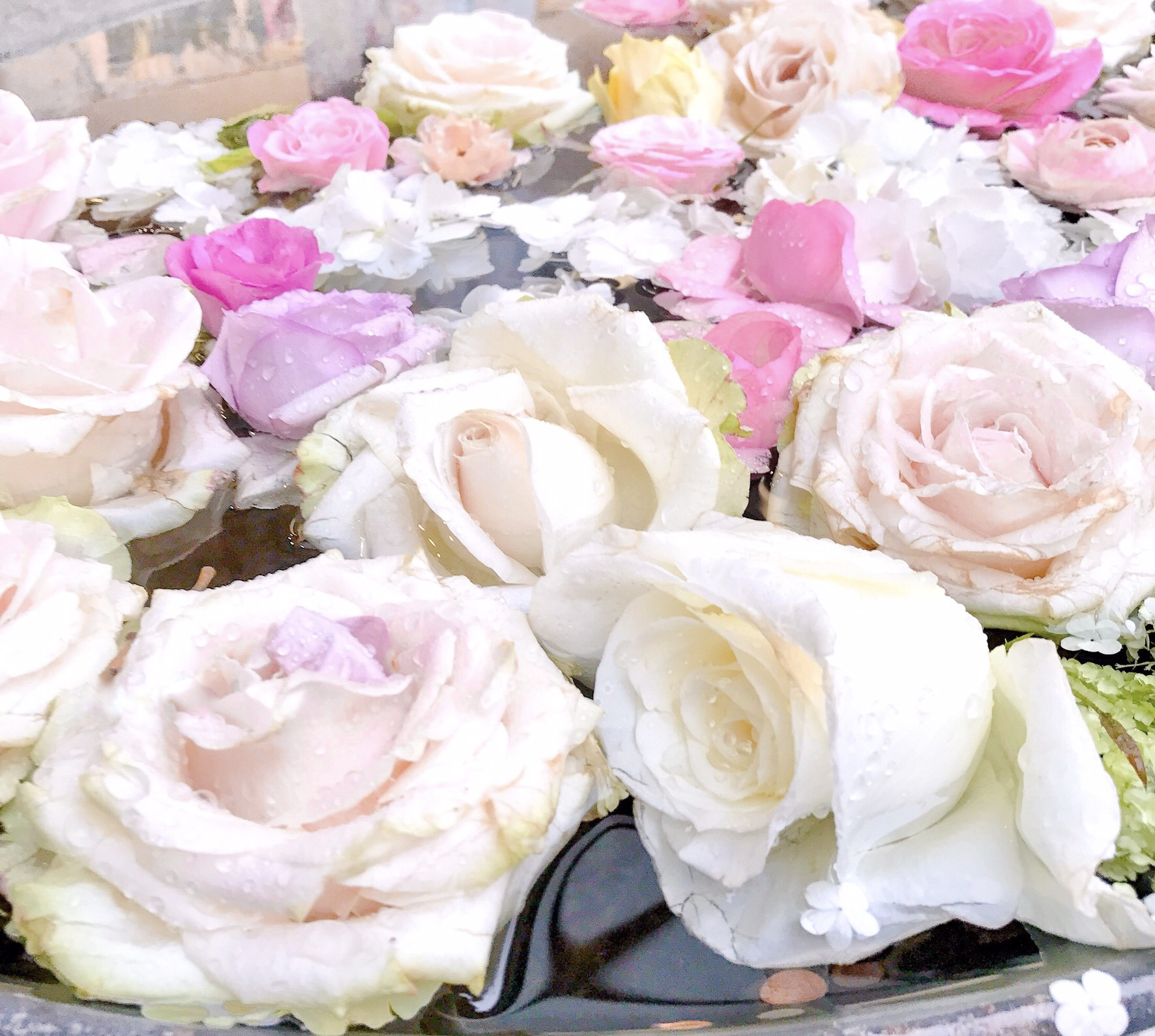 12 Cute Ways To Fall In Love With February, Raindrops On Roses | Love Catherine